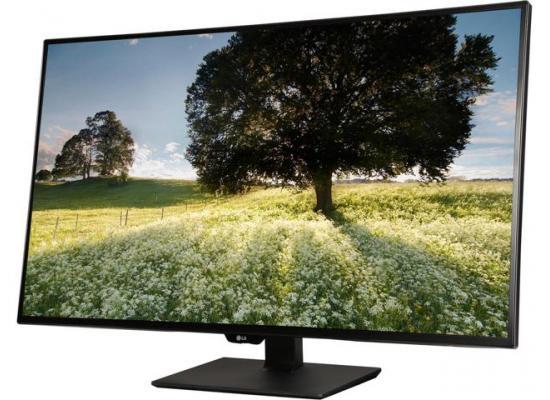 """LG 43UD79-B 43"""" 16:9 4K IPS Monitor Type-C Input"""